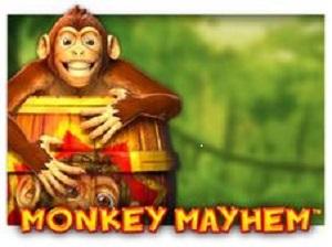 Free Monkey Mayhem Online Slot