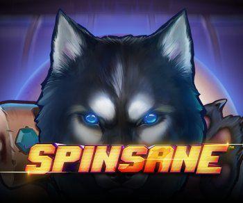 Spinsane Video Slot