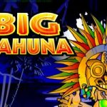 Big Kahuna Free Slots Game