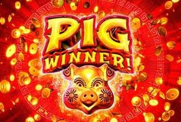 Springbok Casino launches Pig Winner