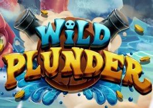 Take a Wild Plunder