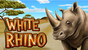 White Rhino Slots Tournament
