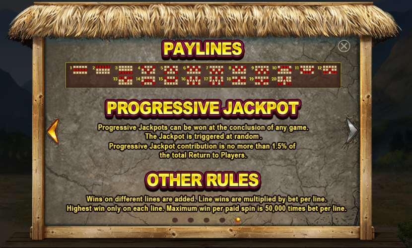 Other Rules incl paylines