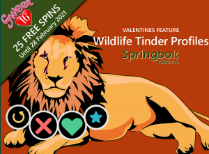 Sweet 1+6 Free spins and Wildlife Tinder Profiles from Springbok Casino